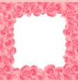 pink carnation flower border2 vector image vector image
