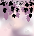 Plant background with grapes vector image vector image