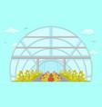 plantation in greenhouse cartoon vector image vector image