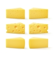 Set of Triangular Pieces Kind Swiss Cheese vector image vector image