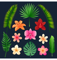 Tropical Flowers and Palm Trees Leaves Set vector image vector image