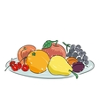 A plate of fruit vector image vector image