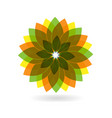 abstract flower spring pattern logo vector image