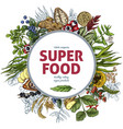 superfood round banner full color sketch vector image vector image