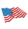 us flag icon vector image vector image