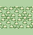 yellow plumeria flower pattern seamless on green vector image