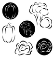 A small set of vegetables logos vector image vector image