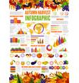 autumn harvest season infographic vector image vector image