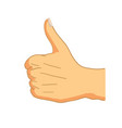 cartoon hand in thumbs-up gesture on white vector image vector image