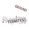 ground termites text background word cloud concept vector image vector image