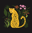 jungle leopard vector image
