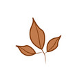 three branch brown leaf cartoon autumn theme vector image