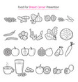 healthy food for breast cancer prevention outline vector image vector image
