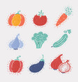 set icons vegetables vector image