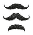 three mustache set vector image vector image