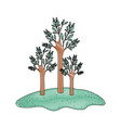 trees set in grassland in colored crayon vector image