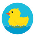 yellow rubber duck vector image