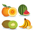 set tropical and exotic fruits vector image