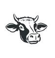 cow head logo dairy farm fresh milk beef symbol vector image