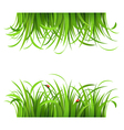 Green grass and ladybirds vector image vector image