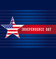 independence day usa star banner vector image