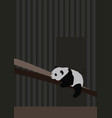 panda sleeping on white background vector image vector image