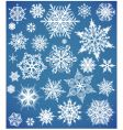 snowflakes design collection vector image vector image