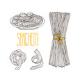 spaghetti ketches vintage hand drawn pasta vector image