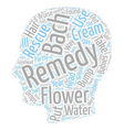 Bach Flower Remedies To The Rescue text background vector image vector image