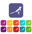 bird magpie icons set vector image