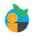 growth and development ico start up vector image vector image