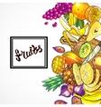 hand drawn fruits vector image vector image