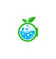leaf laundry logo icon design vector image