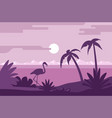 night summer landscape beach with flamingo and vector image