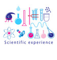 scientific experiments in test tubes vector image vector image