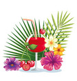 tropical cocktail with cherry fruit and decoration vector image