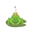 cartoon cute green frog character with insect vector image vector image