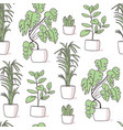 house plant seamless pattern vector image vector image