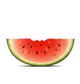 watermelon slice on white background vector image vector image