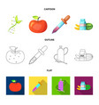design of genetic and plant sign vector image vector image