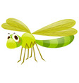 dragonfly in green color vector image vector image