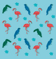 exotic birds pattern background vector image