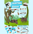 hunting sport ammunition animals or birds vector image vector image