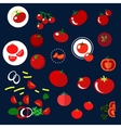 Red tomatoes vegetables flat icons vector image