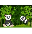 Cartoon mom and baby panda in the climbing bamboo vector image vector image