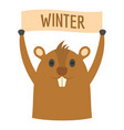 groundhog in winter icon flat style vector image