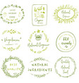 hand drawn labels and elements collection for vector image vector image