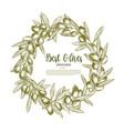 poster olives branch wreath for olive oil vector image