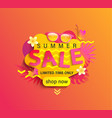 summer sale shop now banner vector image vector image