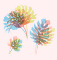 watercolor tropical palm leaf set vector image